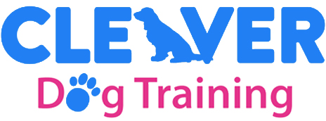 Cleaver Dog Training